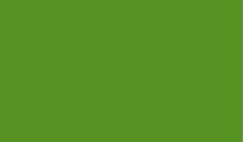 Рекомендовано державною установою «Інститут проблем ендокринної патології ім. В.Я. Данилевського АМН України